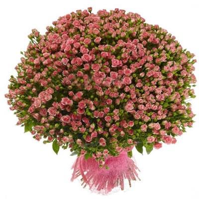 Букет из 101 розовой кустовой розы «Мечтательница»