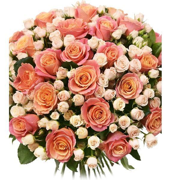 Букет из 25 роз Мисс Пигги и 15 кремовых кустовых роз  «Чары Амура»
